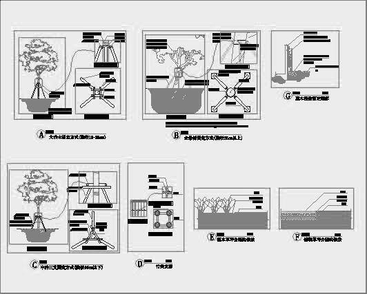 四川成都金色海蓉景观设计施工图-植物种植详图