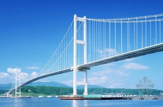 [重庆]跨江大桥桥面系整治工程招标文件