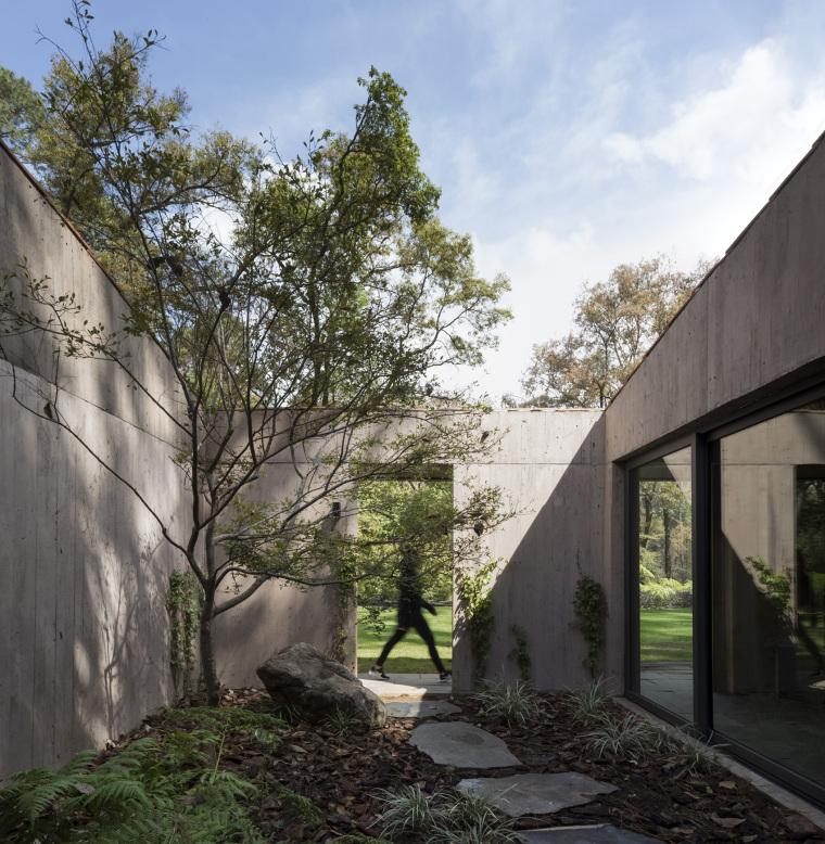 墨西哥浸润在绿意中的L型体量住宅外部实景图 (4)