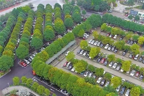 停车场也玩生态_44