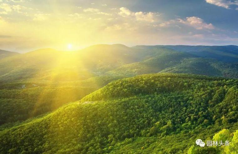 聚焦|我国园林行业未来发展的五大趋势