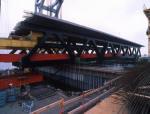 大跨度连续梁连续刚构桥下挠问题控制对策322页