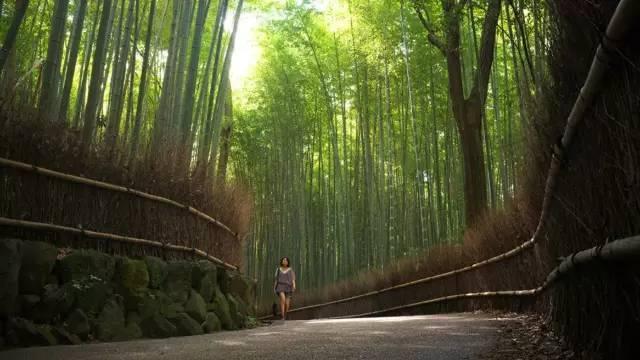 HBA|融合日本传统建筑美学与现代主义风格的京都四季酒店