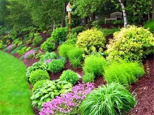 处理坡地景观高逼格方法,种草!种草!!_43