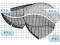 [山东]植物馆工程钢结构吊装专项方案(图文并茂 100余页)