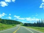 道路绿化工程监理竣工验收资料表格(全套,119页)