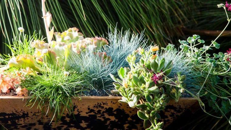 没有土,怎么做花园?圆你一个花园梦