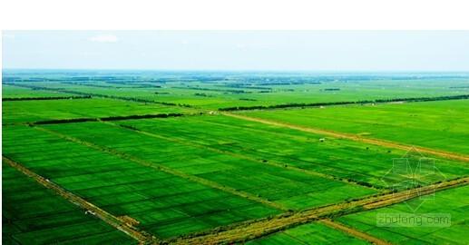 [内蒙古]高标准基本农田建设项目监理大纲(图表俱全)