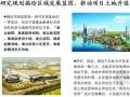 [标杆]地产集团区域开发业务战略规划报告110页