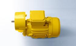 walther-flender齿轮电机用于基于模块化原则基础