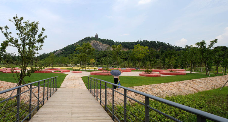 上海辰山植物园-4