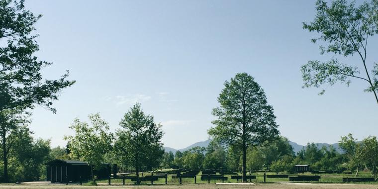 斯洛文尼亚首都的市镇公园-4