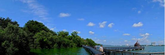 案例分享|新加坡双溪布洛湿地公园景观设计_9