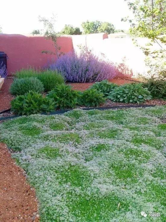 花草与石板的关系•花园小径_31
