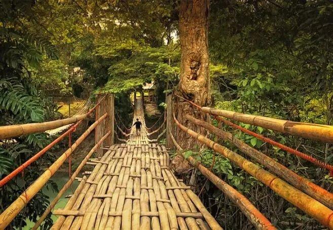[景观材料]生态材料在景观中的应用