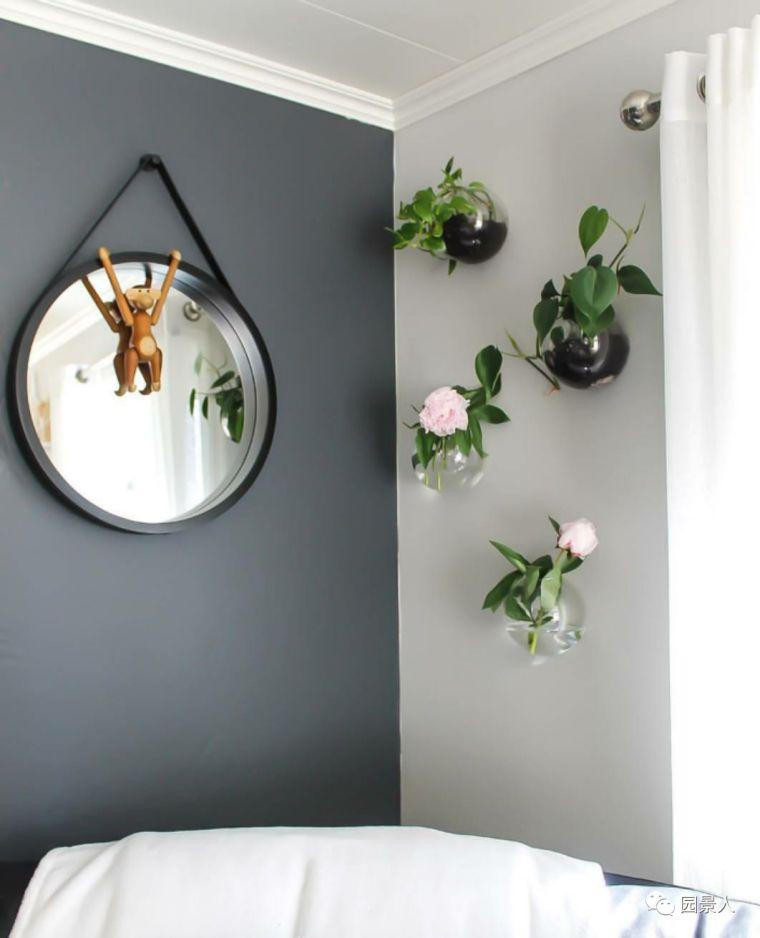 室内植物也可以上墙 . . .