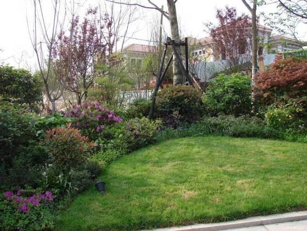 植物组团景观营造——中下层植物配置
