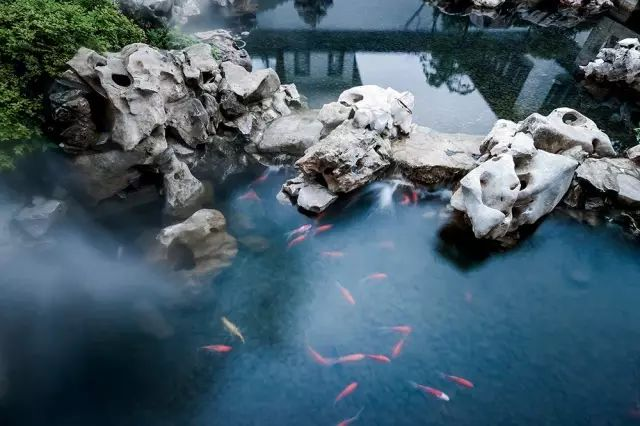 一座中式园林,震惊了中国文化界_12