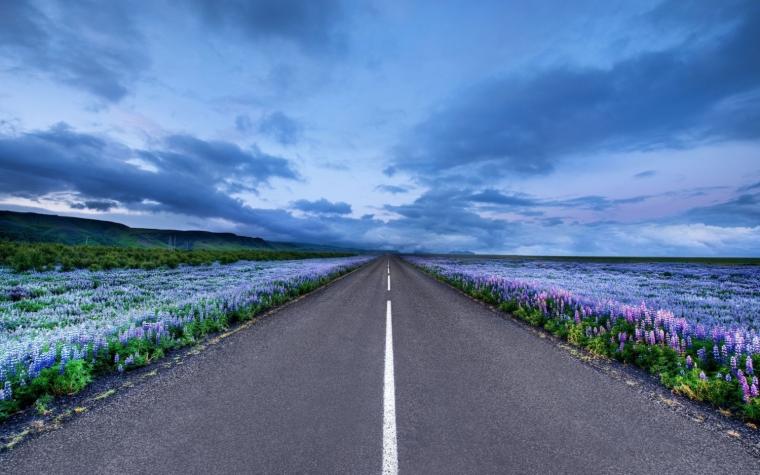[山东]双向四车道高速公路工程施工监理计划(305页)