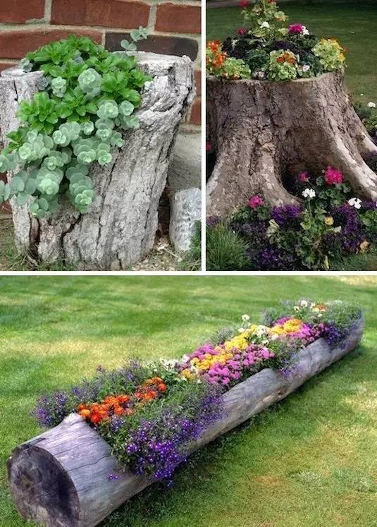 21种方法种花,比在花盆里美十倍!_14