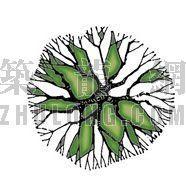 平面彩图树14