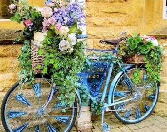 21种方法种花,比在花盆里美十倍!_22