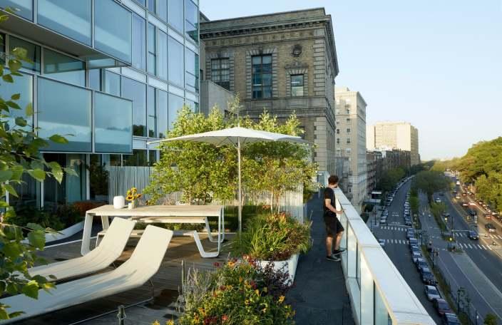 郁郁葱葱的屋顶花园-1