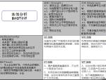 大型综合体项目营销策划报告(图文并茂)