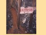 【全国】隧道常见灾害与防治技术(共67页)