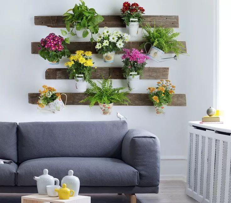 """墙上""""种""""植物,竟如此好看?_26"""