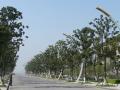 市政工程之道路绿地规划设计