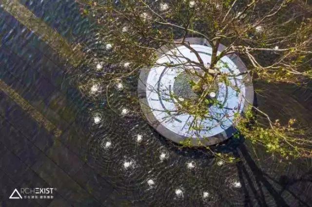 树池的配置方法和设计形式_60