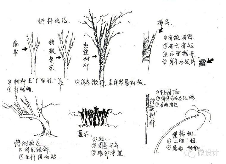 景观手绘线稿练习必备