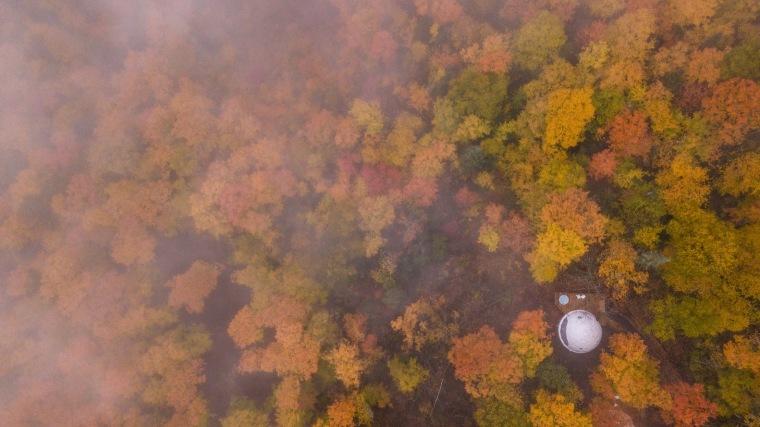 加拿大树林里的球状帐篷旅馆-3