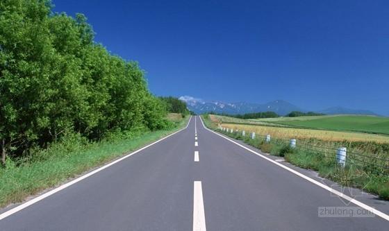 [河南]新建道路工程量请单报价