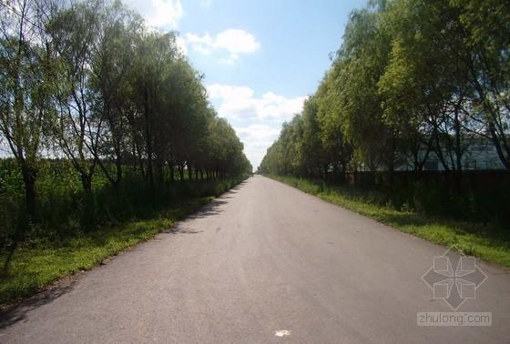 农村道路投标资料下载-[河北]新建乡村道路工程施工招标文件(25页)