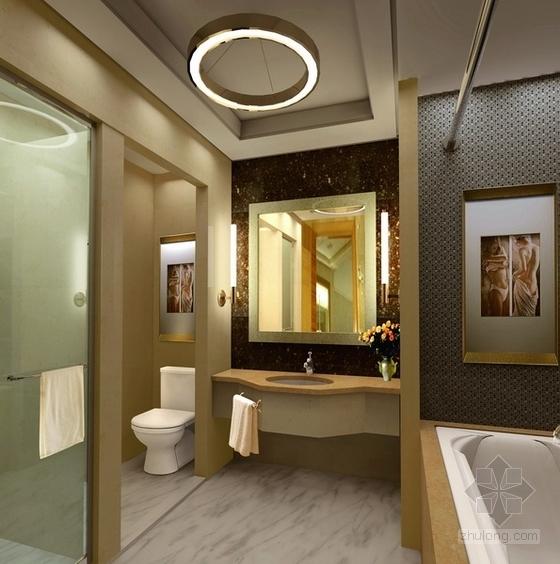 [宜昌]01经济开发区核心地带五星级商务酒店方案设计 客房洗手间