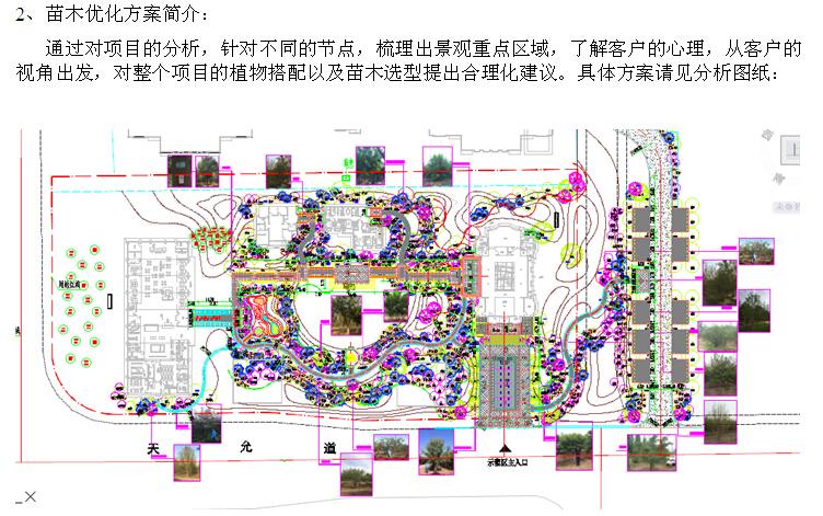房地产园林工程标前项目分析解读(229页,技术标)_4