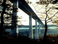 桥梁发展趋势与现状(PPT总结124页)