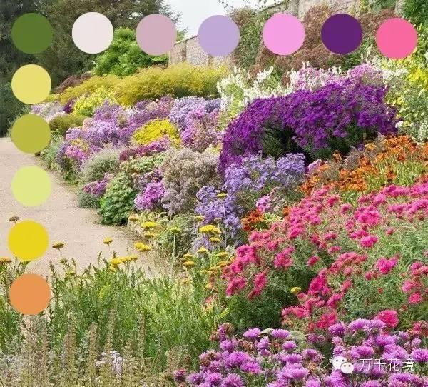 教你如何进行花境中的色彩配置-013.jpg