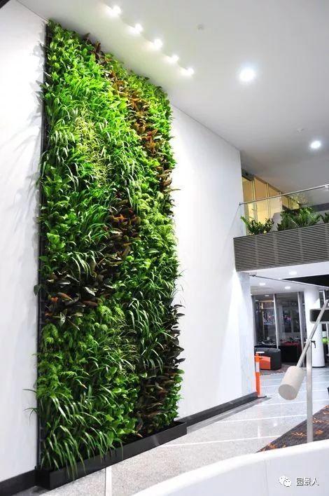垂直绿化·会呼吸的墙壁_30