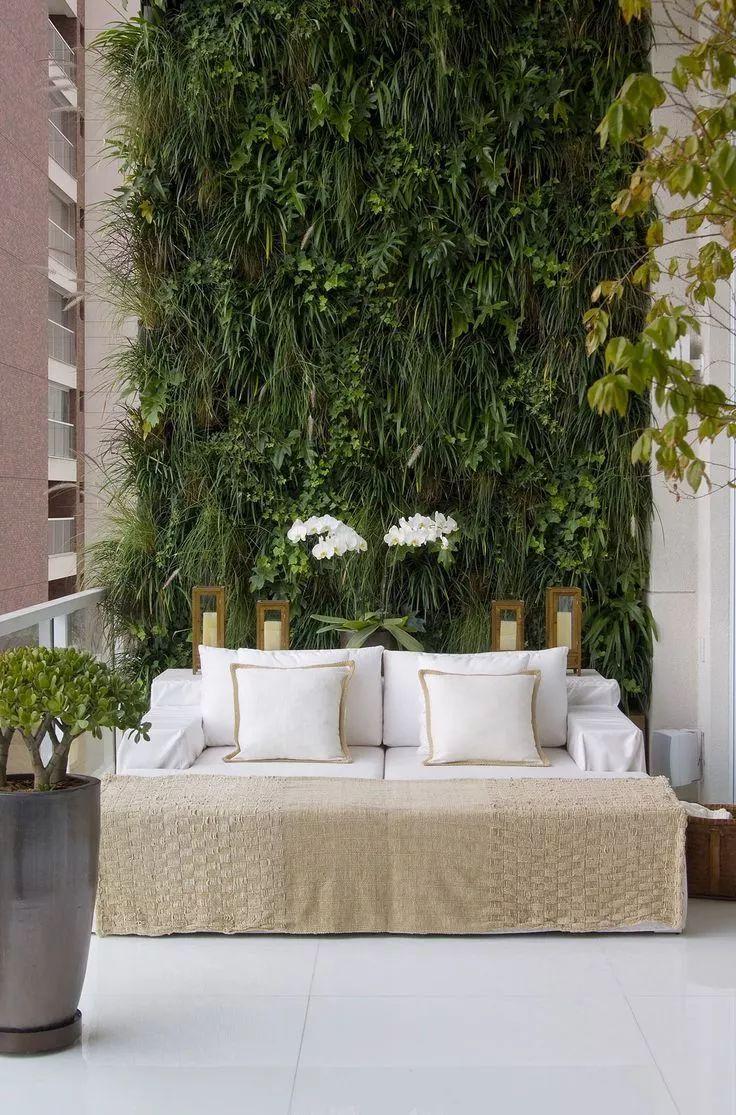 """墙上""""种""""植物,竟如此好看?_22"""
