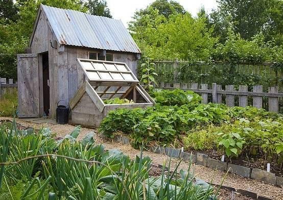 你真正需要的,也许只是一个小院,看繁花爬满篱笆_1