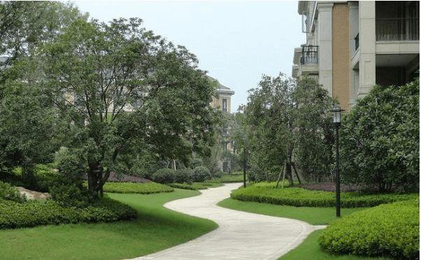 透过施工看居住区景观设计_3