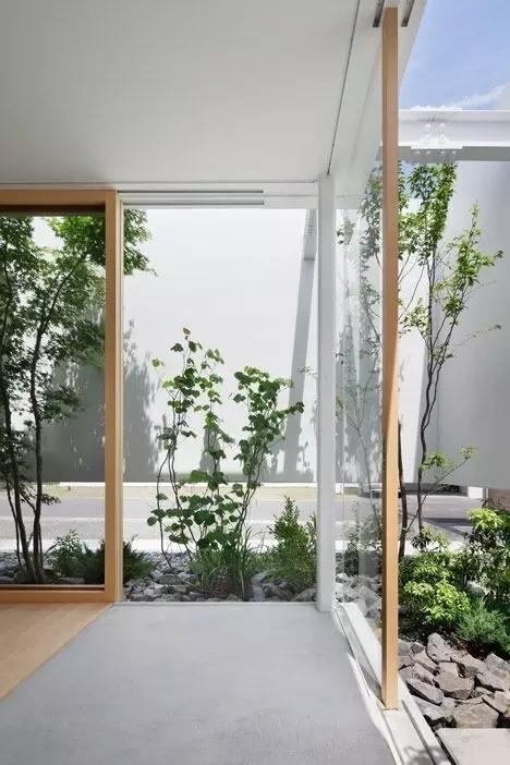 景观做得好丨给树让让路-640.webp (41).jpg