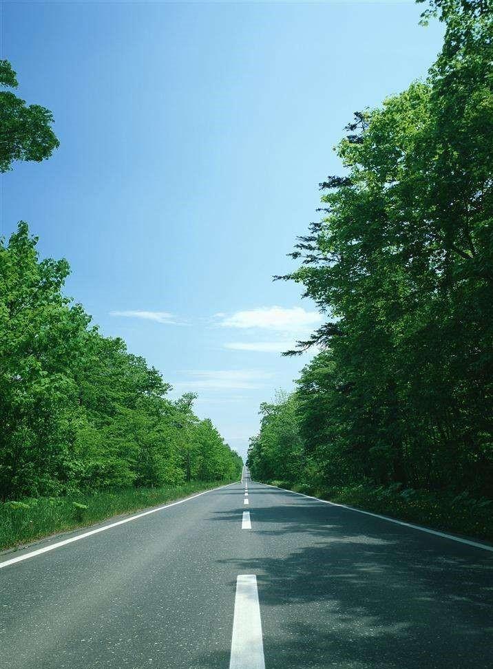 [广东]公路桥梁工程监理投标书