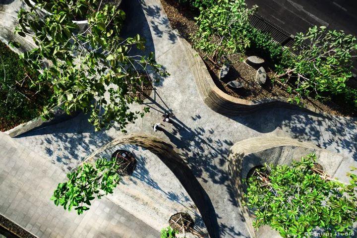 树池的配置方法和设计形式_13