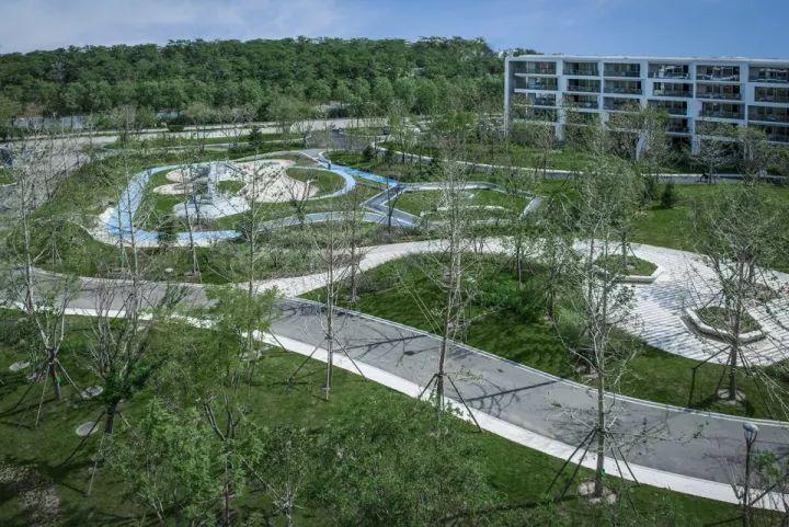 树池的配置方法和设计形式_27