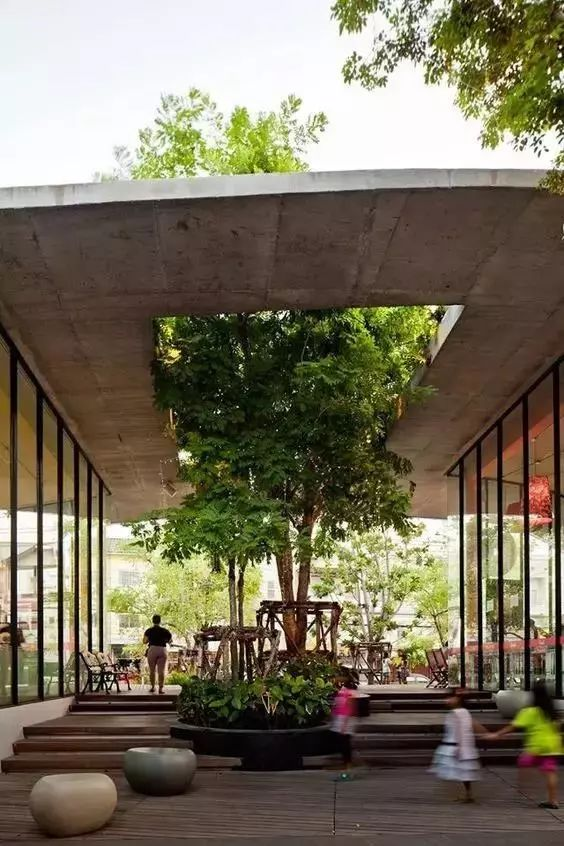 当你的房子里有一颗树_8