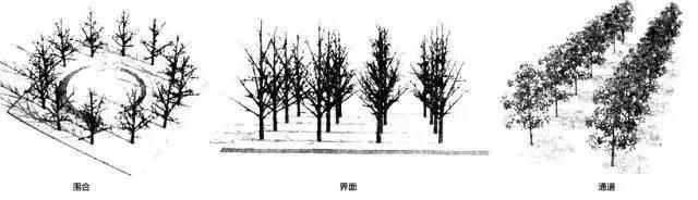 """这些必备的""""植物造景"""",不止是种树种花_2"""